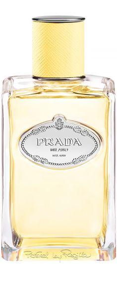 Rosamaria G Frangini | Champagne Desire | Parfumerie | Regilla ⚜ Prada