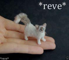 OOAK Realistic Handmade Birman Lilac Point Cat Dollhouse Miniature 1 12   eBay