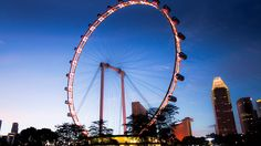 Singapore is one of the most visited tourist destinations in the world. The beautiful places in this city are a craving for people who love to go places and it can be the perfect destination for a perfect vacation. When you are in Singapore, one of the first things that you should do is visit Singapore Flyer, one of the... http://www.milestogo.biz/visit-singapore-flyer