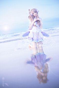 南ことり - shiropon(白ぽん) Kotori Minami Cosplay Photo - WorldCosplay