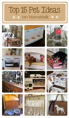 Top 15 pet project ideas on Hometalk! Totally want to do the cat enclosure for Waren!