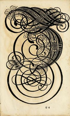 Wow !! --From a 17th century German book on calligraphy entitled The Proper Art of Writing: a compilation of all sorts of capital or initial letters of German, Latin and Italian fonts from different masters of the noble art of writing.