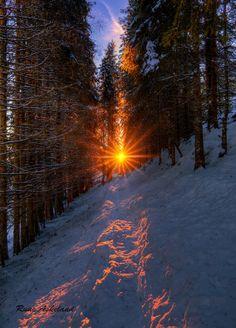 Woodland sunrise (Norway) by Rune Askeland / 500px