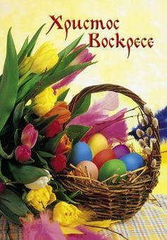 Holidays And Events, Happy Holidays, Happy Birthday Flower Bouquet, Easter Bunny Pictures, Happy New Year Pictures, Orthodox Easter, Catholic Pictures, Easter Traditions, Happy Birthday Wishes