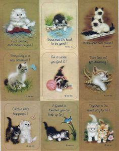 Stickers Vintage 1 sheet KITTENS AT PLAY by American Greetings 1984 A1-15  #AmericanGreetings #Stickers