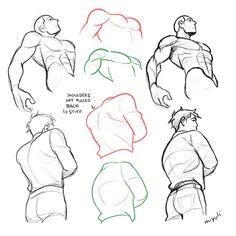 art reference Miyuli is creating Comics and Illustration Body Reference Drawing, Human Figure Drawing, Anatomy Reference, Art Reference Poses, Hand Reference, Anatomy Sketches, Anatomy Drawing, Anatomy Art, Art Poses
