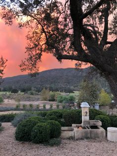 An Update on the Thomas Fire here in California...
