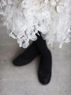 Ballet Dance, Dance Shoes, Ireland, Designers, Fashion, Dancing Shoes, Moda, Fashion Styles, Ballet