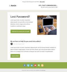 9 Best Forgot Password Template Email Images On Pinterest Forgot