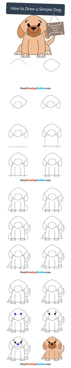 Learn How to Draw a Simple Dog: Easy Step-by-Step Drawing Tutorial for Kids and Beginners. #dog #drawing. See the full tutorial at https://easydrawingguides.com/how-to-draw-a-simple-dog/