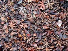 Tons of star anise Star Anise, Texture, Stars, Crafts, Surface Finish, Manualidades, Sterne, Handmade Crafts, Craft