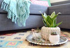 32 qm²   Ein wenig mexican home – neuer Teppich, Kakteenkollektion und aufgepimpte Blumentöpfe