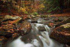 Fall stream by Jeff Lombardo on 500px