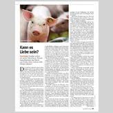 Forscher wollen ein uraltes Rätsel lösen: Warum essen Menschen das Fleisch von Tieren, deren Leid sie nicht ertragen können? Animals, People Eating, Psychology, Meat, Foods, Love, Animales, Animaux, Animal Memes