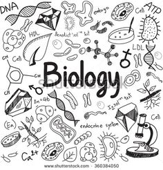 Doodles - Biology science theory doodle handwriting and tool model icon in white isolated paper background used for school education and document decoration, create by vector Science Doodles, Science Art, Doodle Drawings, Doodle Art, Hand Drawn Font, Adult Coloring Pages, Coloring Books, Science Notebook Cover, Doodle Pages