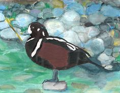 The 2013 Florida Junior Duck Stamp of Chairelys Rojas, 13, honorable mention in Group 3, grades 7-9. DDWS photo