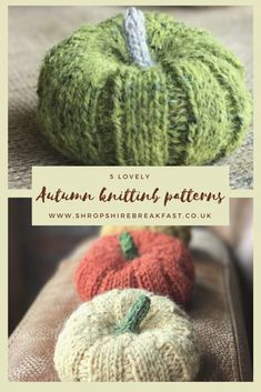 5 autumn knitting patterns 5 easy autumn knitting patterns, perfect for taking on your autumn country weekend break. Includes my favourite knitted pumpkin pattern Baby Knitting Patterns, Halloween Knitting Patterns, Crochet Patterns For Beginners, Knitting Stitches, Knitting Projects, Knitting Ideas, Craft Stick Crafts, Yarn Crafts, Diy Crafts