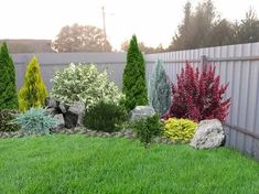 Urban Garden Design, Rock Garden Design, Backyard Garden Design, Flower Garden Design, Evergreen Landscape, Front Garden Landscape, Evergreen Garden, Landscape Design, Landscaping Along Fence