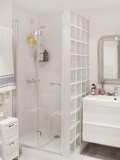 Pared ducha con cristal de paves