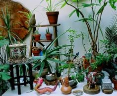 Veronica Schwartz & Pablo Castro's place