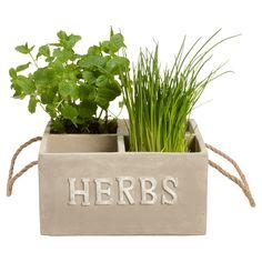 Plantenbak Herbs met plek voor vier plantjes. Afmeting: 23x23x12 cm (lxbxh). Kleur: grijs. #plantenbak #planten #tuin #tuindecoratie #KwantumLente