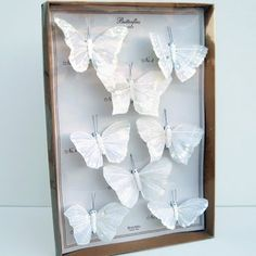 love the white butterflies!