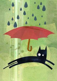 A los gatos nunca les llueve, http://medialunadegrasa.blogspot.com.ar/
