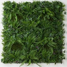 4 Sublime Useful Ideas: Artificial Grass Astroturf artificial garden wall.Artificial Plants Wall Patio artificial grass how to install. Jardin Vertical Artificial, Artificial Green Wall, Artificial Plants And Trees, Fake Plants, Indoor Plants, Hanging Plants, Artificial Flowers, Vertikal Garden, Vertical Garden Wall