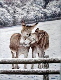 Donkeys in snow Ivan Jones | Artists Info - Online Art Gallery