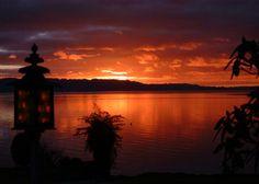 Absolute Lakeside, near t-Ngongotaha-Bach or holiday home