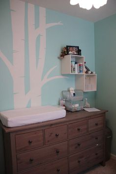 Google Image Result for http://www.babylifestyles.com/images/nursery/ethan-modern-tiffany-nursery/robins-egg-tiffany-blue-baby-boy-nursery.jpg