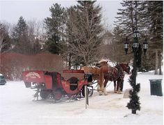 Winter sleigh ride at Nestlenook Farms in Jackson, New Hampshire