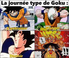Le quotidien de Goku... - Be-troll - vidéos humour, actualité insolite