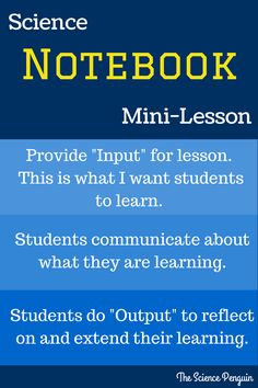 ISN Mini-Lesson: Including Input and Output