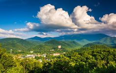 Top 5 Reasons to Spend President's Day Weekend at Our Hotel in Gatlinburg TN