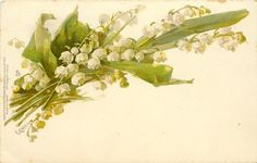 Lily-of-the-valley by Catherine Klein ~ 1903