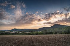 Lauret - Here is the view from my village, Lauret. My house is 200 meters from this new vineyard. First time I take this landscape in photo, when the vine will be bigger I think the photos will be even more successful with a nice foreground.