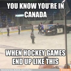 You Know Youre If —canada When Hockey Games. ~ Memes curates only the best funny online content. The Ultimate cure to boredom with a daily fix of haha, hehe and jaja's. Funny Shit, Haha Funny, Funny Jokes, Funny Stuff, Funny Things, Funniest Jokes, Funny Gifs, Random Stuff, Rink Hockey