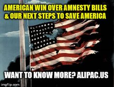 American Win Over Amnesty Bills And Our Next Steps to Save America! (Read & Share)