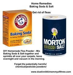 DIY Flea Powder for Your Home - Get Rid of Fleas w/o Using Chemicals & Pesticides - Baking Soda & Salt! - DustinNikki Mommy of Three DIY Flea Powder for Your Home – Get Rid of Fleas w/o Using Chemicals & Pesticides – Baking Soda & Salt! Dog Flea Remedies, Flea Remedy For Dogs, Natural Remedies For Fleas, Flea Removal For Dogs, Home Remedies For Fleas, Herbal Remedies, Flea In House, Flea Spray For House, House Dog