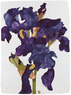 "Sarah Graham - ""Iris"" @.grahamgallery.co.uk/current_works/images/iris-II.jpg"