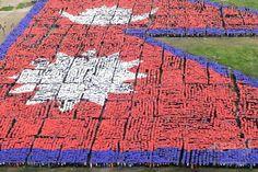 ネパールの首都カトマンズ(Kathmandu)の中心部にある広場で、3万5000人以上が集まって描いた同国の国旗の航空写真(2014年8月23日撮影)。(c)AFP/Prakash MATHEMA ▼24Aug2014AFP ネパールで3万5千人の「人間国旗」、内戦後の国造りにエール http://www.afpbb.com/articles/-/3023926 #Kathmandu