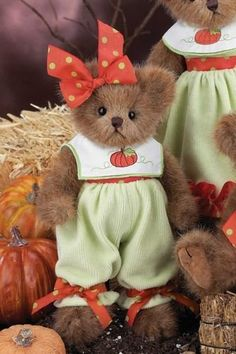 "Bearington Bear Fall Bear ""Hannah Harvest"" by Bearington, http://www.amazon.com/dp/B0090VUAPK/ref=cm_sw_r_pi_dp_K9Kmrb01NWPCN"