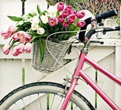 The pink bike, white basket, pink & white tulips...Do you think she bought them at a Farmer's Market on a Saturday morning?