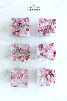 The best DIY projects & DIY ideas and tutorials: sewing, paper craft, DIY. Diy Crafts Ideas How to make your own floral ice cubes! Love this DIY using edible flowers. Great party planning idea and easy tutorial. Flower Ice Cubes, Party Salads, Ice Ice Baby, Edible Flowers, Diy Flowers, Wedding Flowers, Flowers Garden, Flower Diy, Cactus Flower