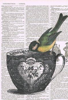 Antique Book Page  Print.Vintage Tea Cup,teacup.Yellow Bird.