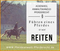 #PFERDERECHT #ANWALT ACKENHEIL http://www.tierrecht-anwalt.de http:://www.pferdeanwalt-pferderecht.de #REITEN #ANWALT kostenlose #Ersteinschätzung Terminvergabe : 06136-762833