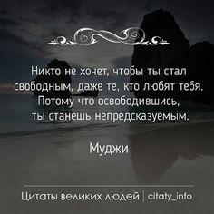 Мудрые цитатв