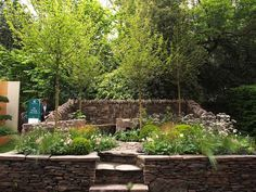 Image result for chelsea flower show trade stands stone
