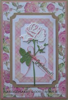 De Lage Hoeve: Kaart met roos